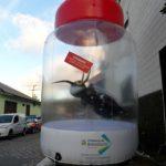 balão-inflável-mosquito da dengue