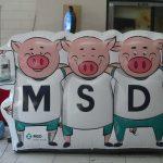 mascote inflável os três porquinhos