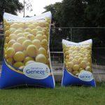 replica inflável genética ceneze